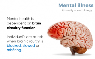 Wellness Wednesday #1: Mental Health is About Biology